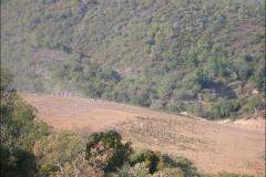 ROCDAZUR2007-1016