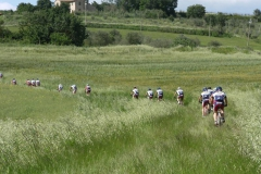 2010-trasimeno-1021